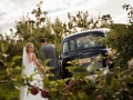black-cab-orchard-wedding